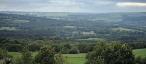 View of landscape